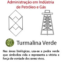 Administração em Indústria de Petróleo e Gás