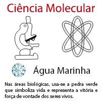 Ciência Molecular