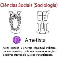 Ciências Sociais Sociologia