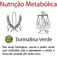 Nutrição Metabólica