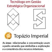 Tecnólogo em Gestão Estratégica Organizacional